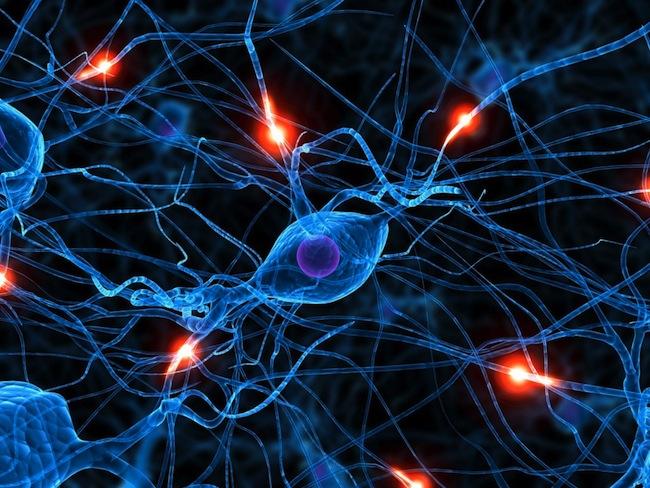 Cervello-neuroni-1024x768