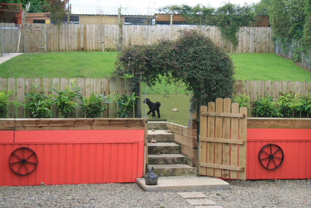 Exercise_area_for_dogs_running_free_Barndarrig_boarding_kennels_in_Barndarrig,_Wicklow,_Ireland
