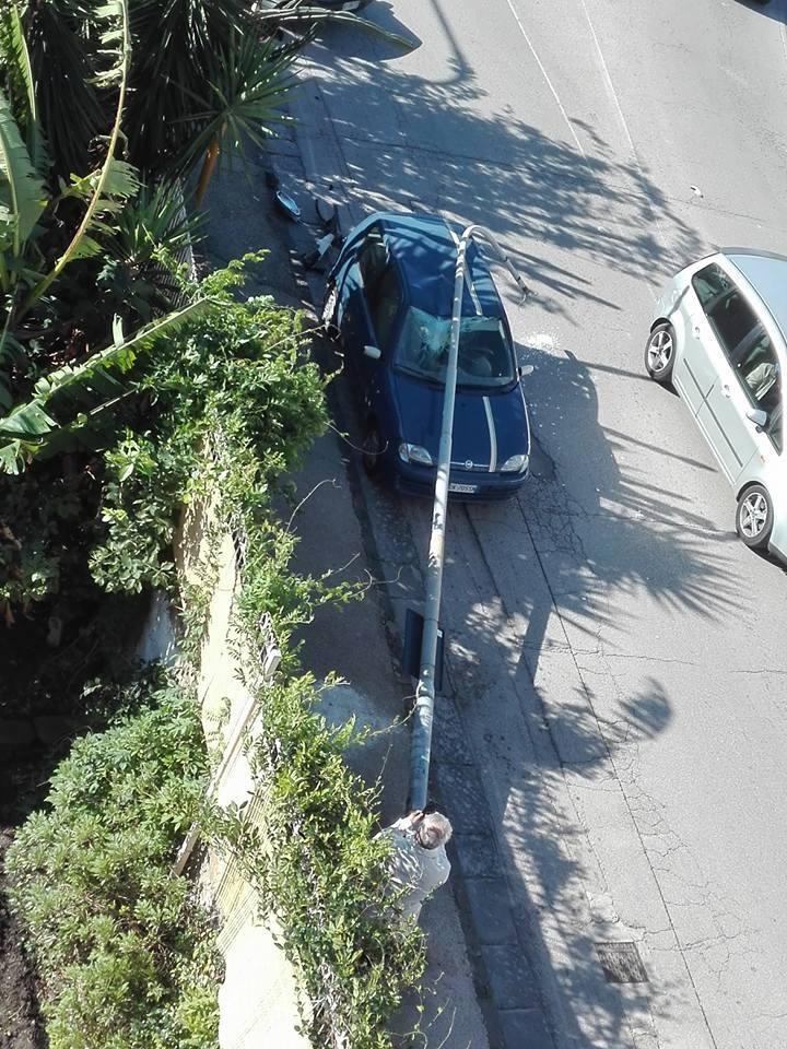 Pomigliano Albero Caduto